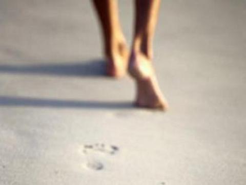 os passos que daremos