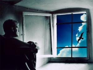 Pela janela novos dias e novos sonhos